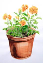 watercolor pansies by degarnemai