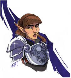 Warden-Commander by MNat
