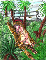 Velociraptor by Predaguy