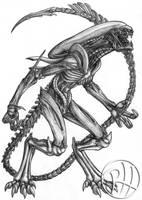 Xenowolf by Predaguy