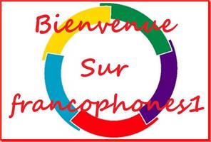 Bienvenue sur francophone1 by Z-image