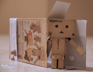 Welcome home, Danbo by arcoirisphoto