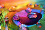 Rainbow Colors by Rustmouth