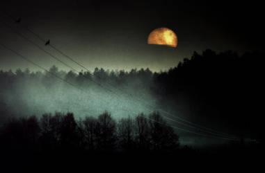 Lune Rousse by Piscisvolantis