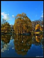 Spring in Park by aadicc