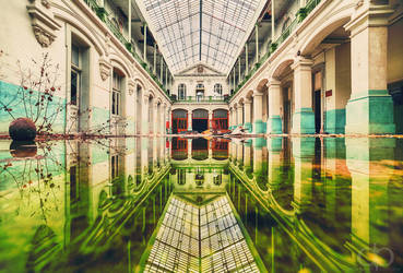 Reflections by Dapicture