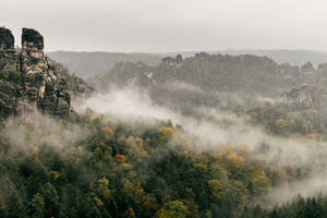 October Mist by Dapicture