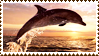 Dolphin Stamp by NoNamepje