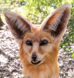 Fennec Fox Mask by netherdenstudio