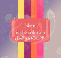 islam is the solution by bsoOma