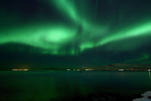 Northern Lights 64 - Pterosaur by ragnaice