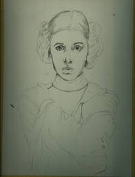 Leia WIP 1 by jeanfverreault