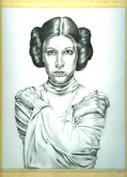 leia WIP 4 by jeanfverreault