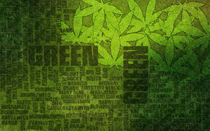 Many names of cannabis by maz2390
