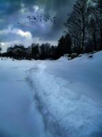 Winter Solitude VIII by SEnigmaticX