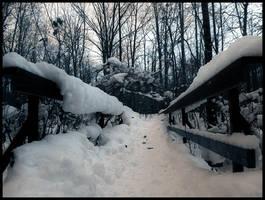 Winter Solitude IX by SEnigmaticX