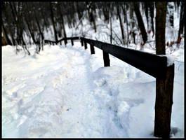 Winter Solitude XII by SEnigmaticX