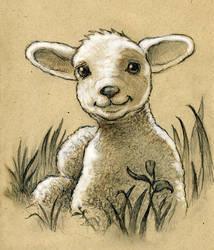 Lamb by CAMartin