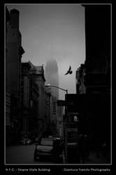 N.Y.C. - Empire State Building by gltvisualart