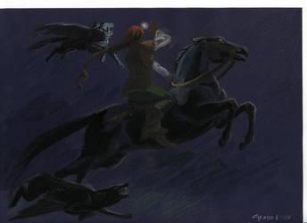 pursuit by Unita-N