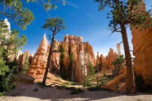 Bryce Canyon 02 by the3dman