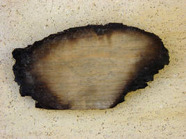 Burnt wood by ashzstock