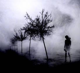 fog III by metindemiralay