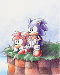 Sonic and Amy Rose by ThePandamis