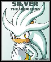 Hedgehog: Silver by ThePandamis