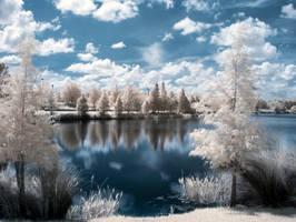 infrared 32 by Weblen