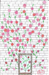 the wall rose by Liilalia