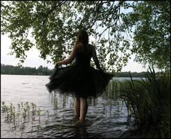 Black Swan IV by Eirian-stock