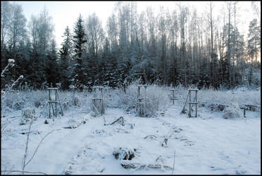 December Afternoon III by Eirian-stock