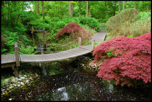 BG Japanese Garden by Eirian-stock