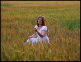 Fields of Gold IV by Eirian-stock