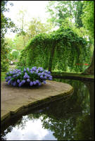 BG Hyacinth Pool by Eirian-stock