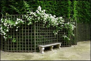 BG Garden Bench by Eirian-stock