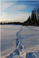 BG Trail In The Snow by Eirian-stock