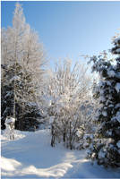 BG World Of Snow I by Eirian-stock
