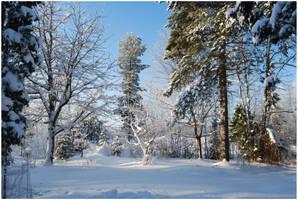 BG World Of Snow II by Eirian-stock