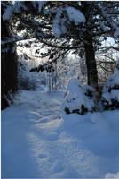 BG World Of Snow III by Eirian-stock