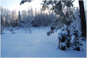 BG World Of Snow VI by Eirian-stock