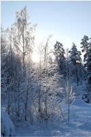 BG World Of Snow X by Eirian-stock