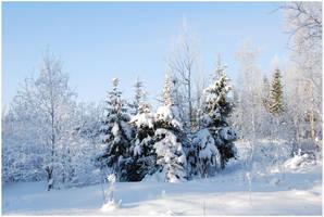 BG World Of Snow XIII by Eirian-stock