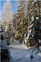BG World Of Snow XV by Eirian-stock