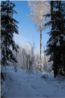 BG World Of Snow XVI by Eirian-stock