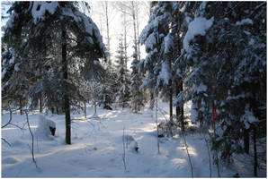 BG World Of Snow XVII by Eirian-stock