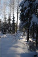 BG World Of Snow XVIII by Eirian-stock