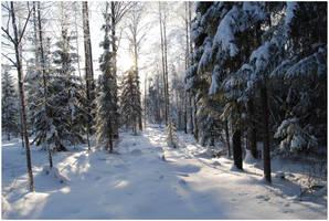 BG World Of Snow XIX by Eirian-stock