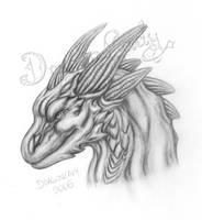 A dragon. by Eva-the-DragonLady